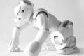Io, Robotto – Automi da compagnia - Mostra a Milano