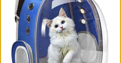 Top Quality Astronaut Space Capsule Breathable Bag Transparent Pet Carrier Backpack