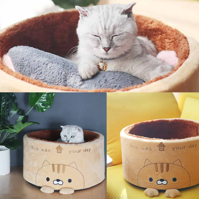 Home sofa bed for cats 😽 Convenient and comfortable