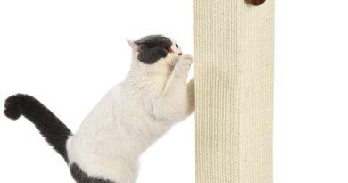 Palo tiragraffi per gatti, alto e grande, di qualità, 40,6 x 89 x 40,6 cm, moquette marrone