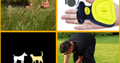 Automatic Dog Poop Collector | Remove dog poop without using your hands!