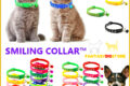 SMILING COLLAR™   BEAUTIFUL COLLAR FOR DOGS AND CATS WITH PENDANT