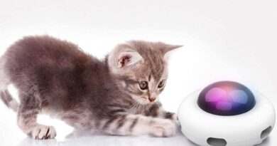 UFOCAT™ | AUTOMATIC SWING TOYS CAT ELECTRIC
